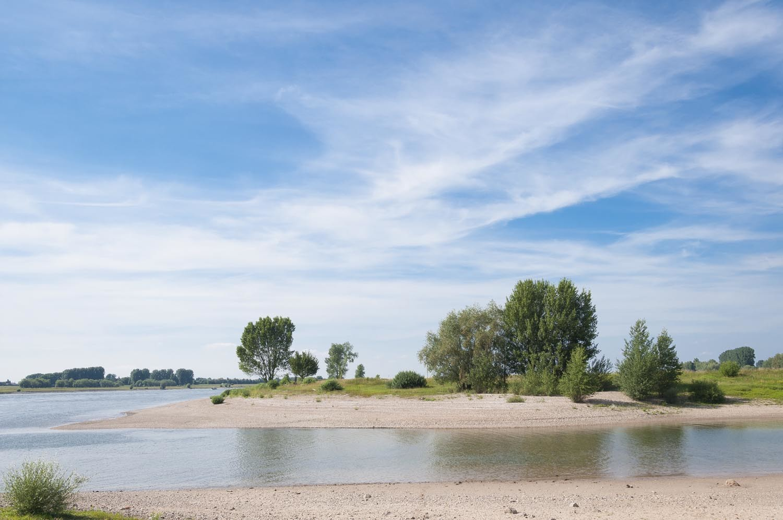 Rheinufer am Fähranleger, rechtsrheinisch